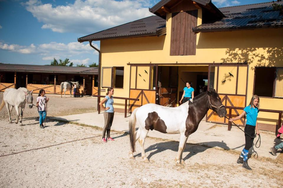 Konjički klub Pegasos